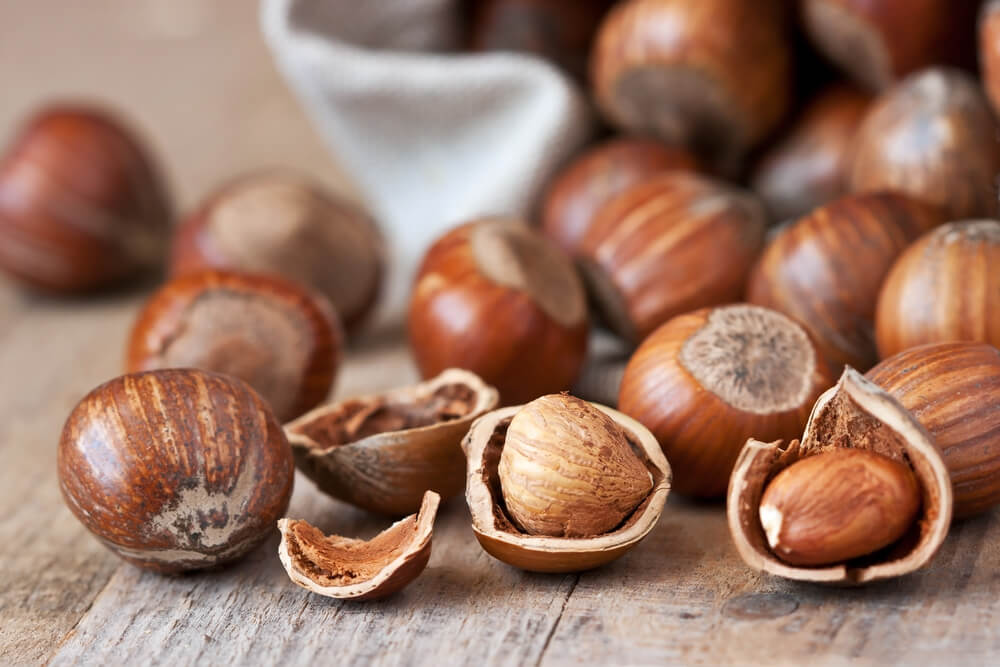 Small collection of hazelnuts in their shells