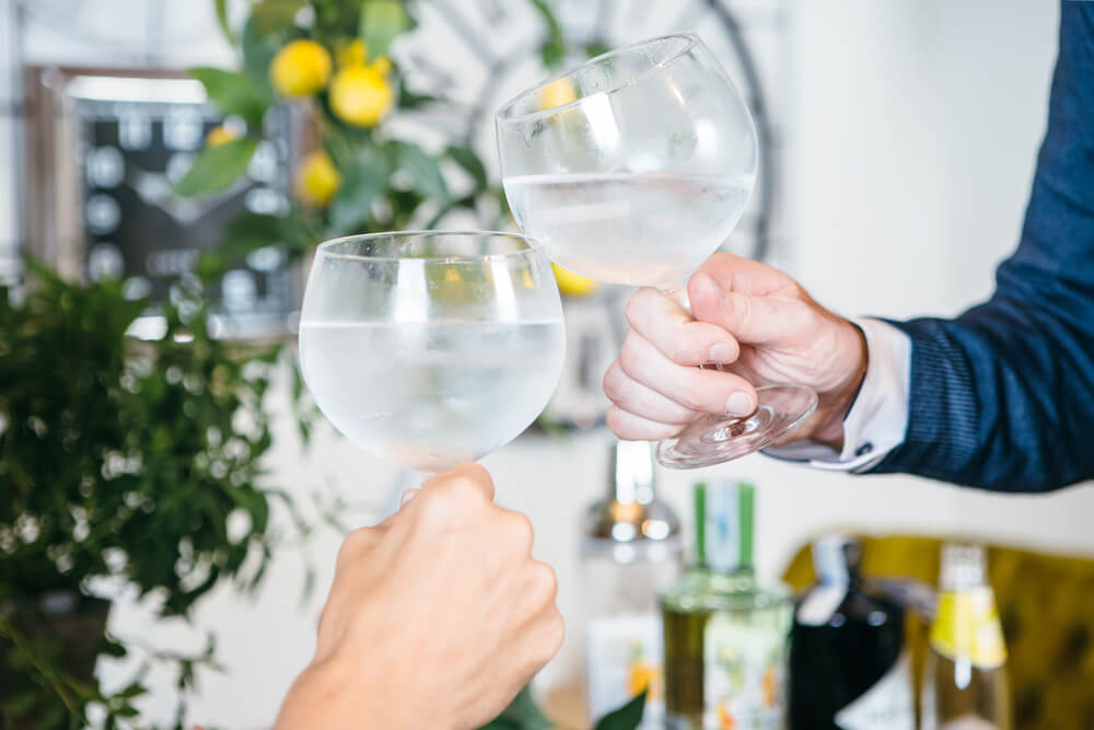 Two people clinking gin glasses